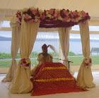 Palki or Mandap for destination Sikh Wedding outside gurdwara